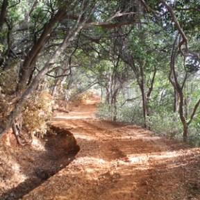 Coronation Point Trail, Matheran. Source: touristlink.com