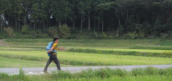 美しい田園風景の中、歩く、歩く・・