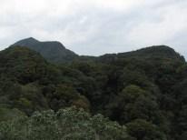 左上の鋸山から嵯峨山までの縦走路