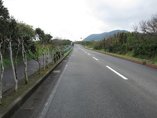 日本の道100選 フラワーライン