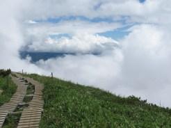 雲に近い木道