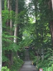 登山口の歴史ある仲仙寺