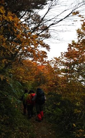 紅葉を眺め下山