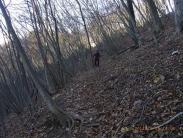 北斜面はこんな感じ落ち葉を踏んで。。。