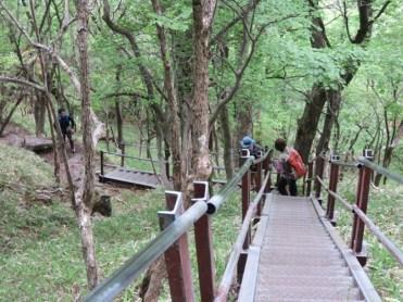 階段の多い下山道