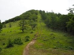 気持ちのいい草原の稜線
