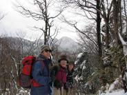 遠くに丹沢の峰々