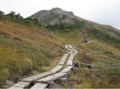 至仏山登山道 この先から岩の登山道
