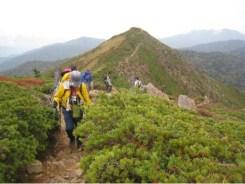 至仏山への最後の登り 後小至仏山