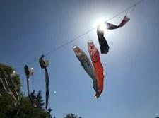 武甲山温泉の前では鯉のぼりが泳いでいました