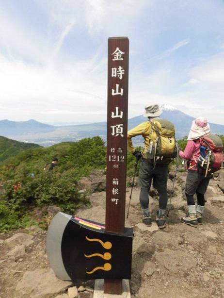 金時山山頂から見える富士山