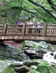渓流に架かる木橋