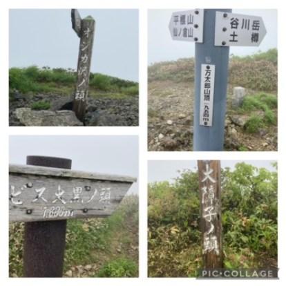 tanigawa01