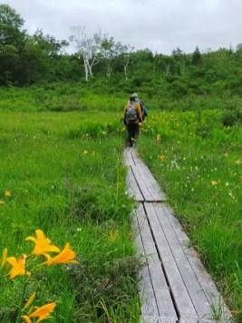木道歩きが楽しい