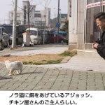 ノラ猫に餌をあげる人たち(2007/04)