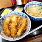 東松山市大字新郷「手打ちうどん ふなと」のイカ天丼のうどんセット