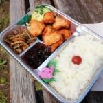 行田市持田4丁目「ファミリーフード すずき」の唐揚げ弁当とお惣菜色々