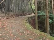 Ryumon Ancient Road, Aira City