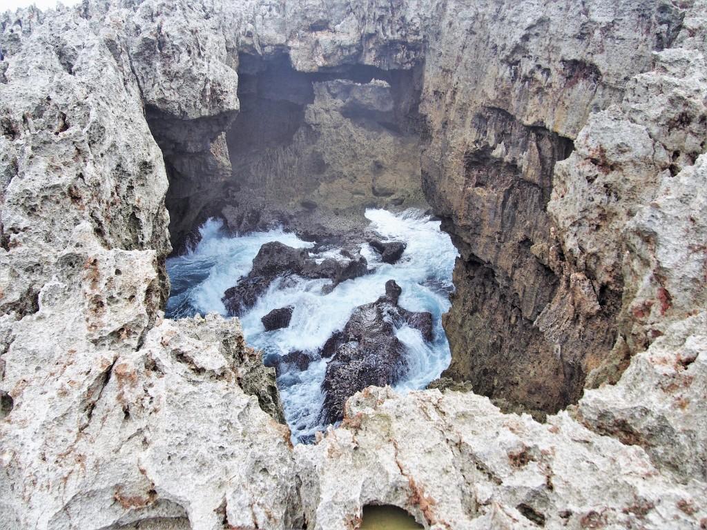 沖永良部島のフーチャ