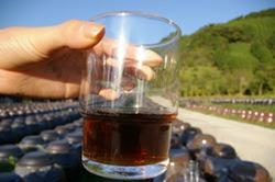 鹿児島 黒酢