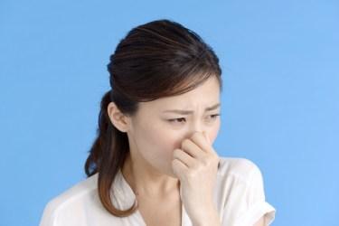 古い家のカビ臭さを消す方法とは?原因や対処法をご紹介