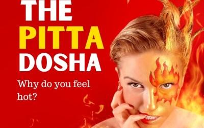 What is Pitta Dosha?