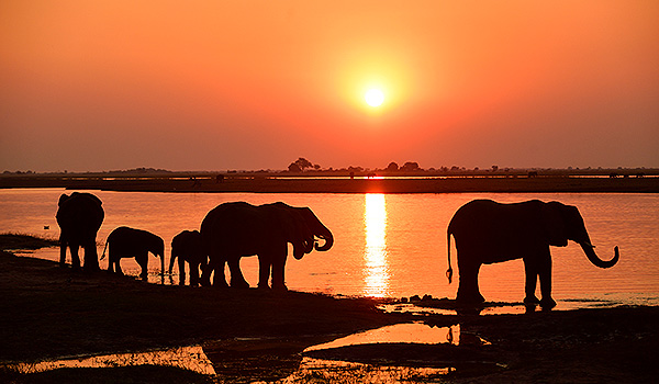 Namibia Botswana - Thomas Sbampato