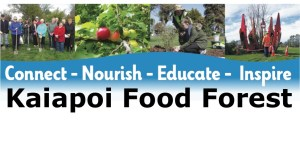 Kaiapoi Food Forest header