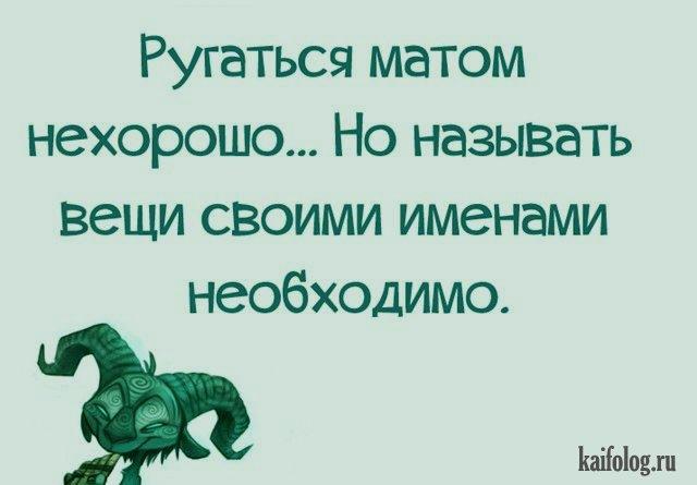 Про русский мат (45 фото)