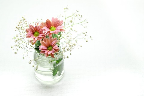 pink-2609210_1280