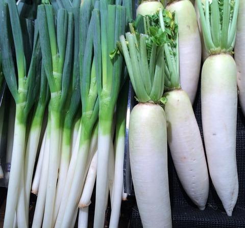 green-onion-1586314_640
