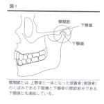顎関節症とは?【一般的な解説と見解】