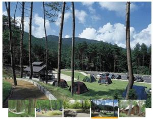 恐羅漢エコロジーキャンプ場の風景