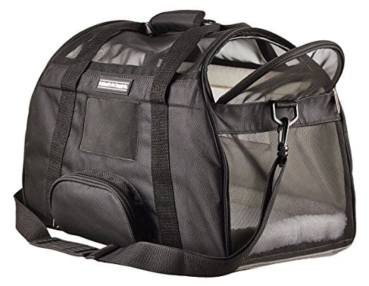 best cat carrier for long car travel - Caldwell's