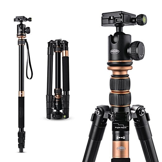 best affordable travel tripod for your carryon under $50 - Rangers