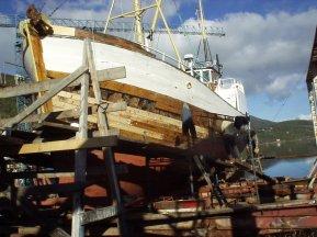 P2180005.jpgplanking