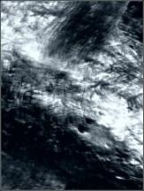 n_dl16-25