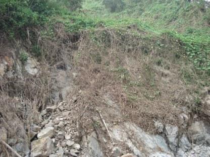damages-typhoon-401