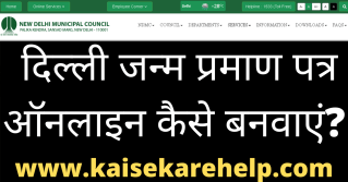 Delhi Birth Certificate Online Apply Form 2020 In Hindi