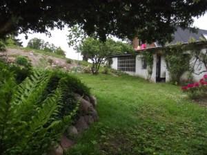 DSCF1830