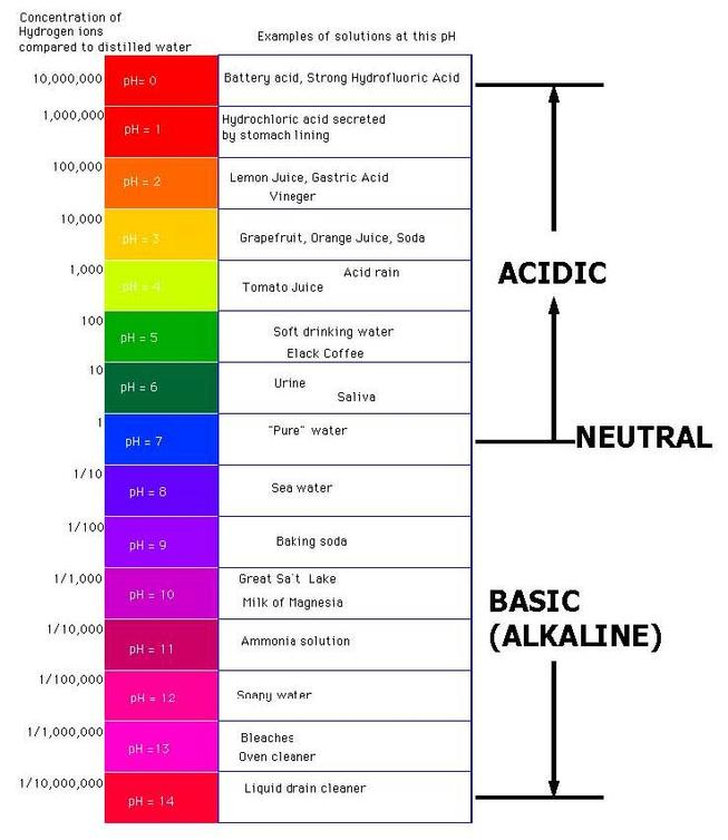 some substances are acids some are bases