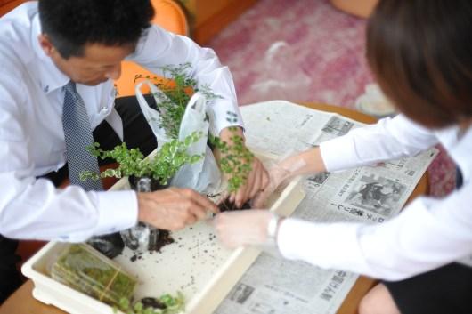 苔玉作り体験
