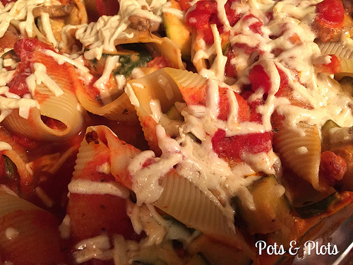 Dairy Free Stuffed Shells Close up