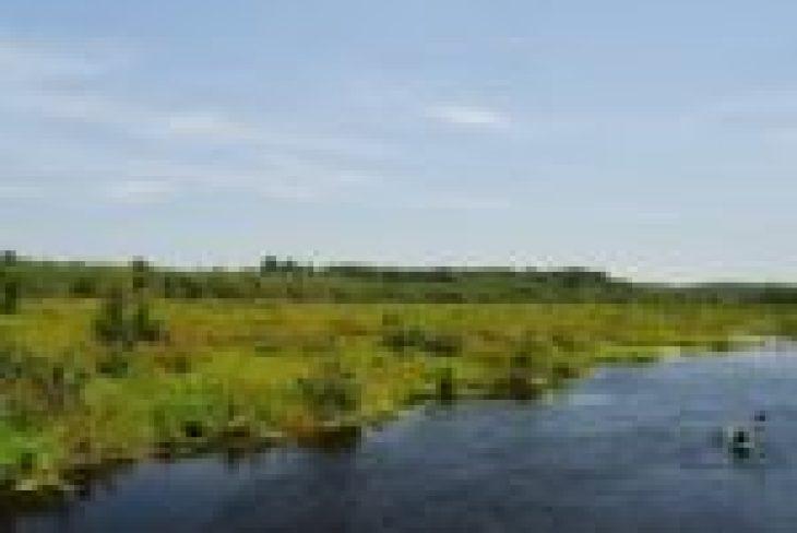 Kajaki Piaśnica, spływy kajakowe dębki, kajaki dębki, spływy kajakowe piaśnica, kajaki kaszuby, spływy kajakowe pomorze