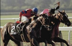 Affirmed beating Alydar at Belmong