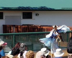 Lakota dancer