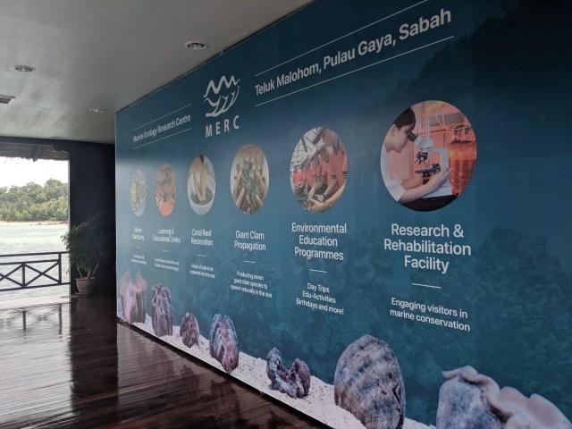 The MERC facility at Gayana Marine Resort