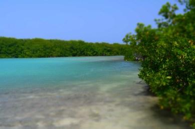 Lac Cai