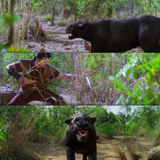 Kakakapo.com-Puli-Tamil-Meme-Templates-1 (85)