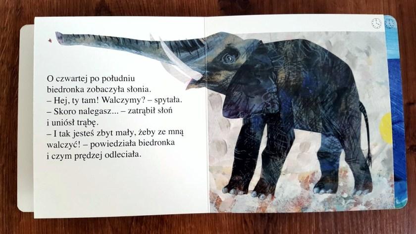 Książki 12mc+ 57